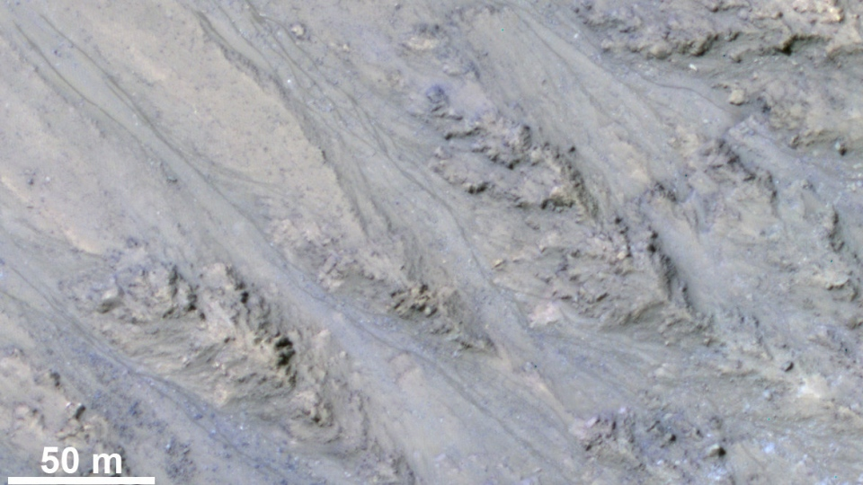 This inner slope of a Martian crater has several of the seasonal dark streaks called 'recurrent slope lineae,' or RSL, that a November 2017 report interprets as granular flows, rather than darkening due to flowing water. The image is from the HiRISE camera on NASA's Mars Reconnaissance Orbiter. (NASA/JPL-Caltech/UA/USGS)