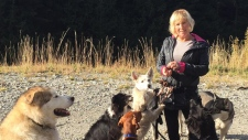 Search growing for missing Coquitlam dog walker