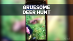 Graphic Warning: Police investigating hunters