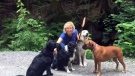What happened to Coquitlam dog walker?