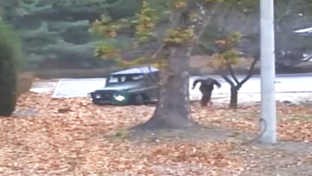 Extended: North Korean defector crosses border