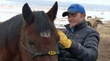 Inspiring Albertan: Matthew Doyle