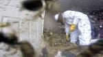 Extended: Removing a massive hornets' nest