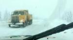 plow drivers