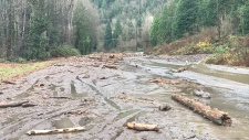 mudslide is seen in the Bridal Falls area
