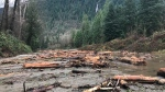 The aftermath of a mudslide along Highway 1 in the Fraser Valley is seen in this photo from Thursday, Nov. 23, 2017. (Steve Murray)