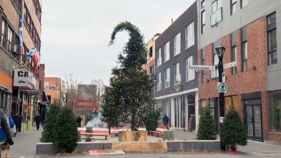 After last year's tall tree was derided as being ugly, this year organizers made a point of finding the worst tree possible -- and to celebrate it. (Nov. 23, 2017)
