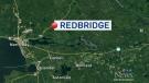 Redbridge toddler and runaway dog found safe