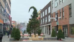 ugly, christmas tree