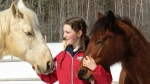 Valerie Dangremond, 16, cares for the two horses on the family's property in Salisbury, N.B.
