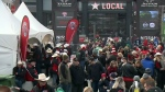 All about the fans at the Grey Cup