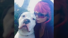 Advocate speaks out about euthanized dog in Surrey