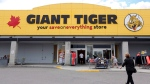 A newly-renovated Giant Tiger store is shown in Ottawa on Thursday August 4, 2016. (THE CANADIAN PRESS/Fred Chartrand)