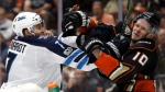 Jets' defenceman Ben Chiarot was fined by the NHL for hitting Ducks' forward Corey Perry in the jaw with the butt end of his stick. (Source: AP Photo/Alex Gallardo)