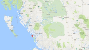 Map marker shows location of Goose Island, B.C. (Google Maps)