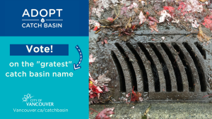 catch basin name contest