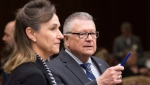 Communications Security Establishment Chief Greta Bossenmaier speaks with Public Safety and Emergency Preparedness Minister Ralph Goodale as they wait to appear before the Standing Committee on Public Safety and National Security, in Ottawa on Thursday, November 30, 2017. (Adrian Wyld / THE CANADIAN PRESS)