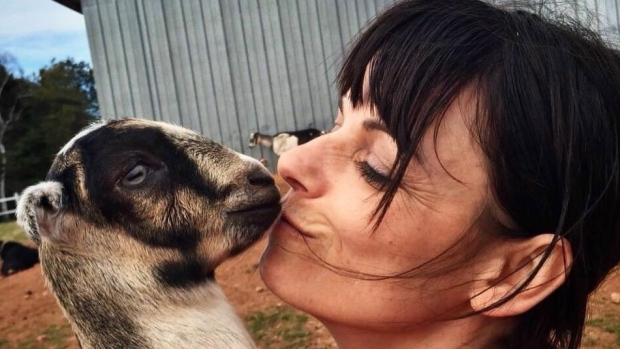 Pets or meat? P.E.I. petting farm gets flak for goats sold to eat