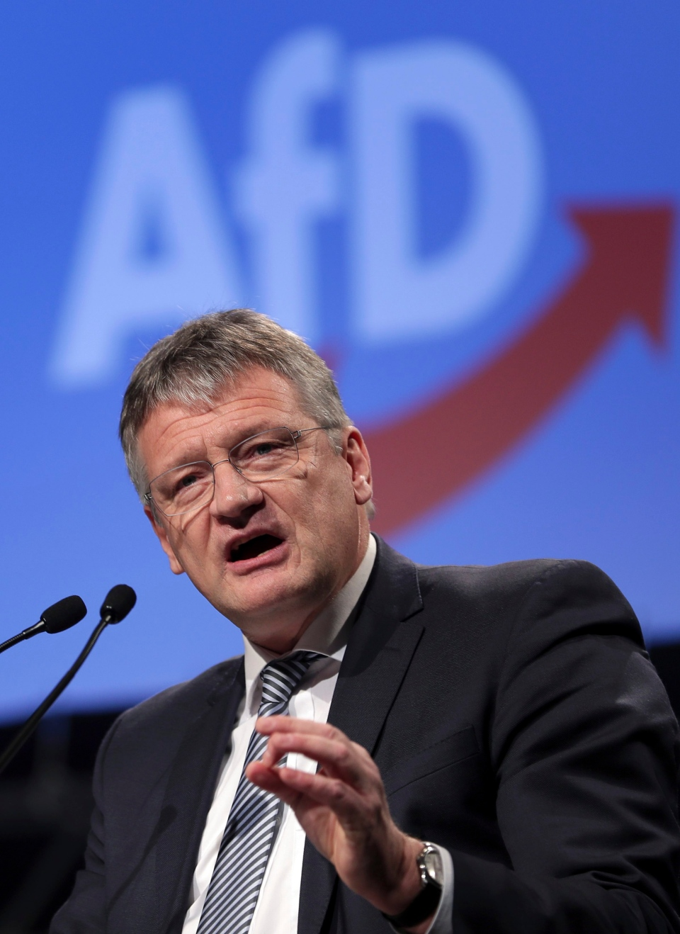 The party's chairman Joerg Meuthen delivers a speech during a party convention of the Alternative for Germany, AfD, party in Hanover, Germany, Saturday, Dec. 2, 2017. (AP / Michael Sohn)
