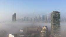 fog, skyline,