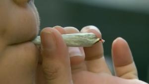 Regina Mayor wants cut of marijuana revenue