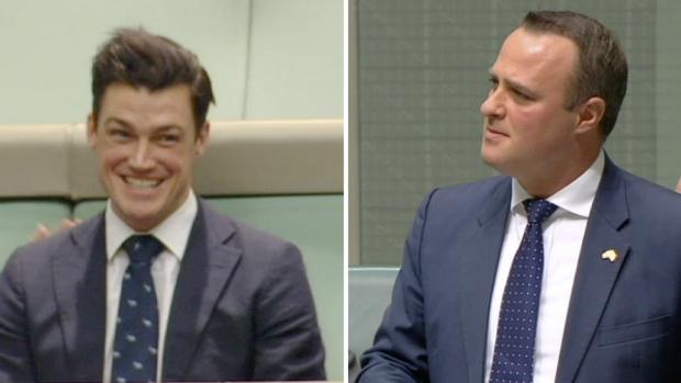 Australian MP proposes to boyfriend