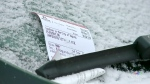 Snowfall leads to temporary parking ban