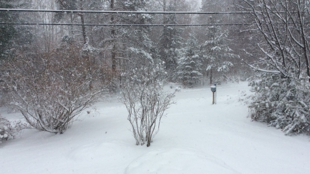 Snow squall warning issued north of city