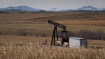 In this file photo, a decommissioned pumpjack is shown at a well head on an oil and gas installation near Cremona, Alta., in 2016. (THE CANADIAN PRESS/Jeff McIntosh)