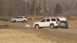 Body, rural Alberta, Strathmore RCMP, Mounties, To