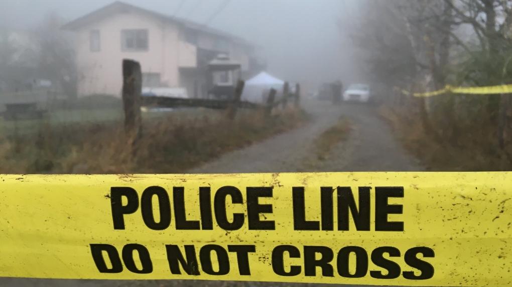 Salt Spring man not criminally responsible in mother's killing