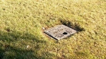 Modern day grave robbers