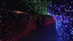 walk of lights christmas K-W Christian Fellowship