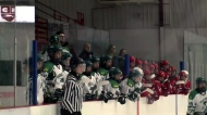 Hundreds hit the ice for Mandi Schwartz Tournament