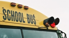 A school bus is seen in this file photo. (File Image)
