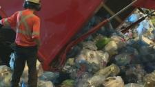 plastic bag, trash
