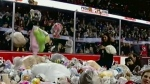 Hitmen take teddy bears to sick kids