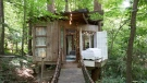 Atlanta treehouse is one of most wish-listed homes on Airbnb. (Airbnb)