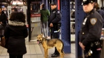 Police officers patrol in the passageway connecting New York City's Port Authority bus terminal and the Times Square subway station Tuesday, Dec. 12, 2017. (AP Photo/Seth Wenig)