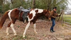 U.S. Senate candidate Roy Moore prepares to ride a horse to vote, Tuesday, Dec. 12, 2017, in Gallant, Ala. Alabama voters are deciding between Moore, former chief justice of the Alabama Supreme Court and Democrat Doug Jones. (AP Photo/Brynn Anderson)