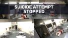 Deputies foil inmate's suicide attempt