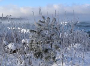 Whitecaps, Cool morning at -17C in Whitefish, December 12th, 2017.