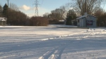 Rink on Hydro One property gets reprieve