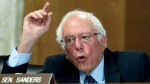 Sen. Bernie Sanders, I-Vt., speaks during the Energy and Natural Resources Committee hearing on Capitol Hill in Washington, Wednesday, Nov. 15, 2017. ( AP Photo/Jose Luis Magana)