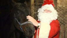 Cape Breton's Kris Kringle needs some horsepower to help him make his Christmas journey.