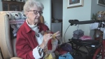 Volunteer knitter still going strong at age 88