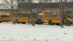 Rural Manitoba school division launching bus app