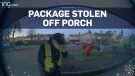 Caught on cam: Thief steals UPS package off porch