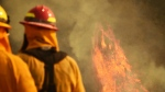 Firefighters keep an eye on flames as pockets of unburned vegetation flare up off Bella Vista Dr. in Montecito, Calif., Wednesday, Dec. 13, 2017. (Mike Eliason/Santa Barbara County Fire Department via AP)