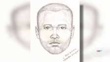 Composite sketch released of apartment intruder